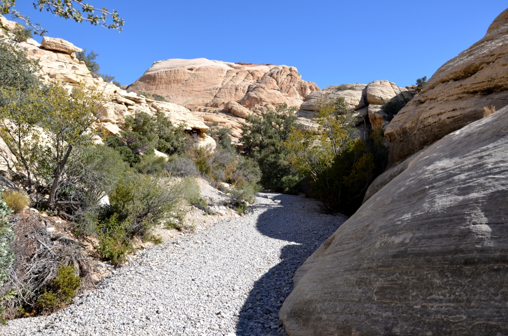 Calico Tanks Trail - Red Rock Canyon