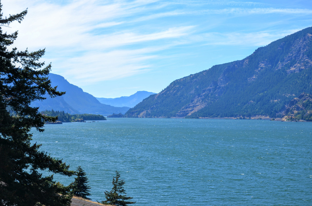 Columbia River from Mitchell Point