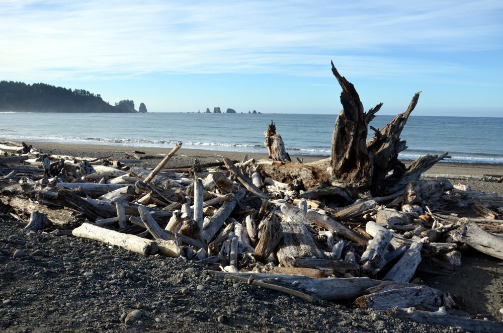 First Beach - Olympic NP