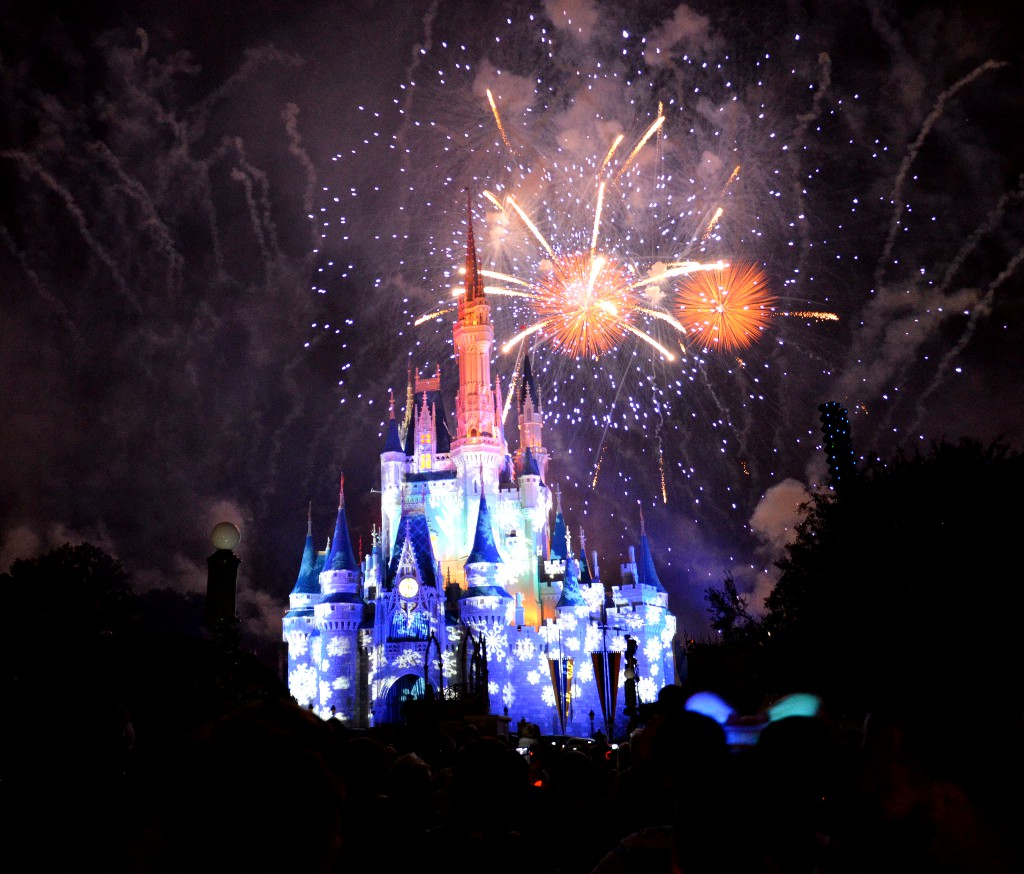 Magic Kingdom Christmas Firework