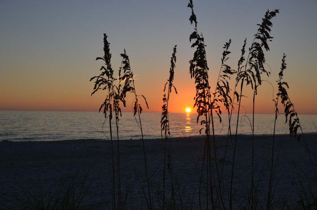 Sanibel Island Sunset
