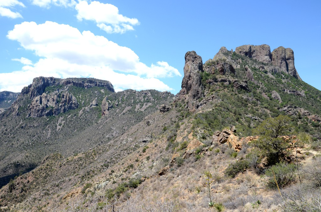Big Bend NP - Lost Mine Trail (1)