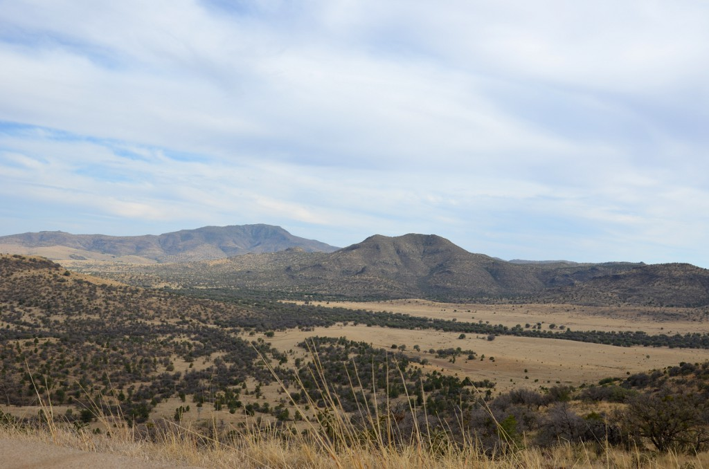 Davis Mountains Texas