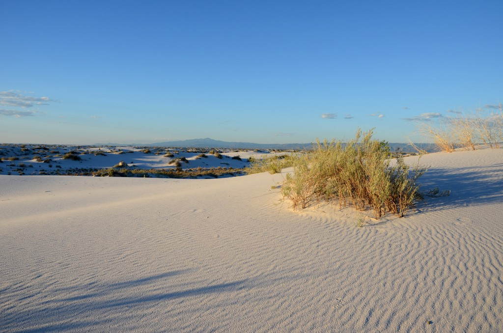 White Sands NM - Einsamkeit
