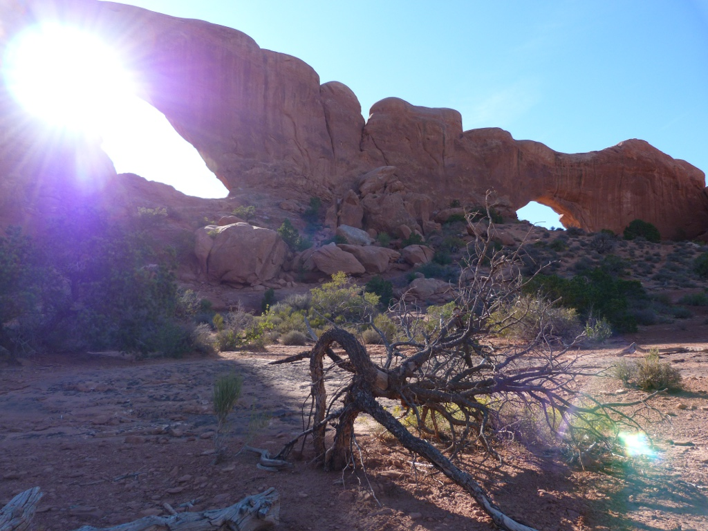 Arches Nationalpark Windows