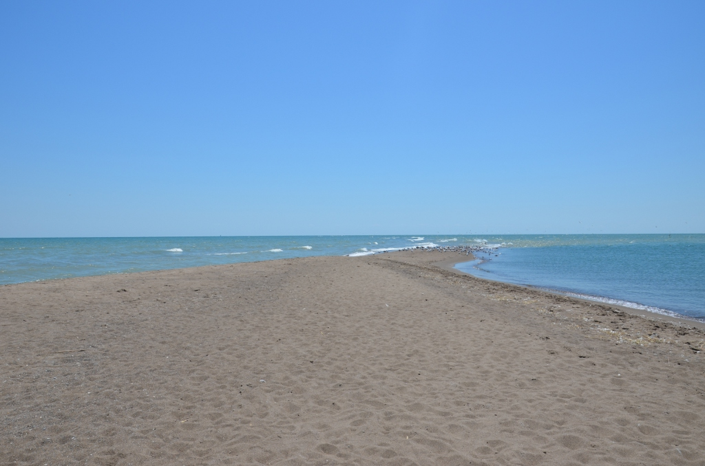 Tip of Canada - Point Pelee