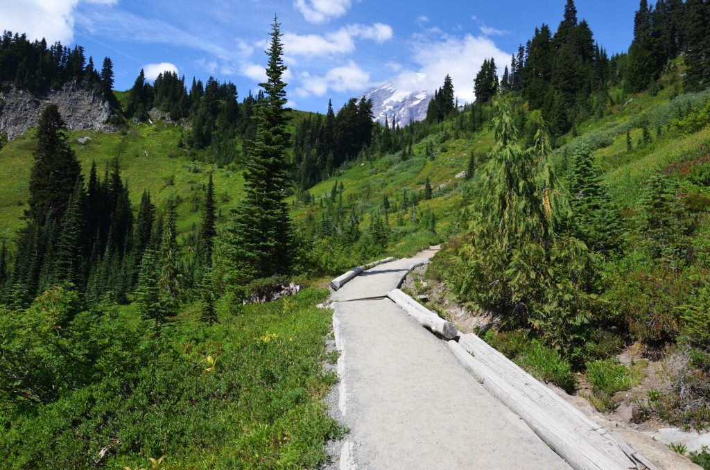 Mt-Rainier-NP-Skyline-Trail-Hike