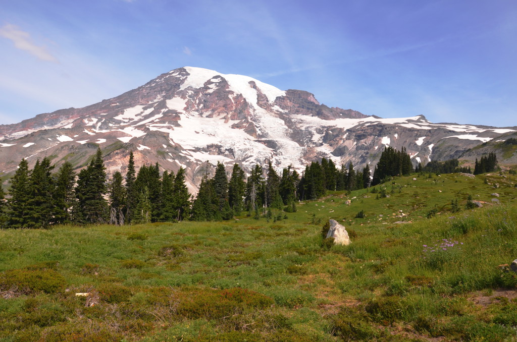 Mt-Rainier-NP-Skyline-Trail-Meadow