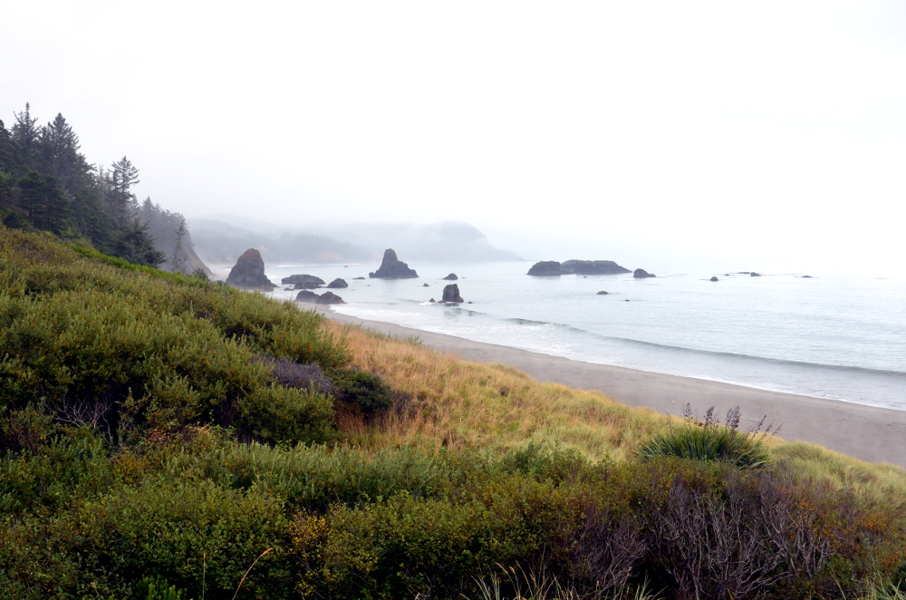 Battle Rock - Port Orford