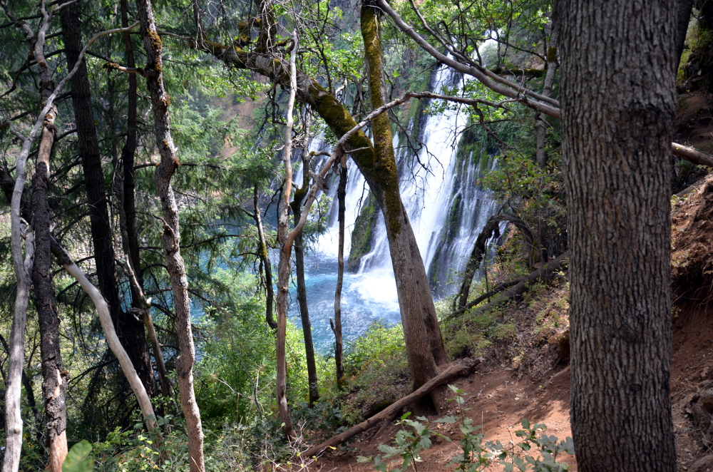 Burney Falls Trail