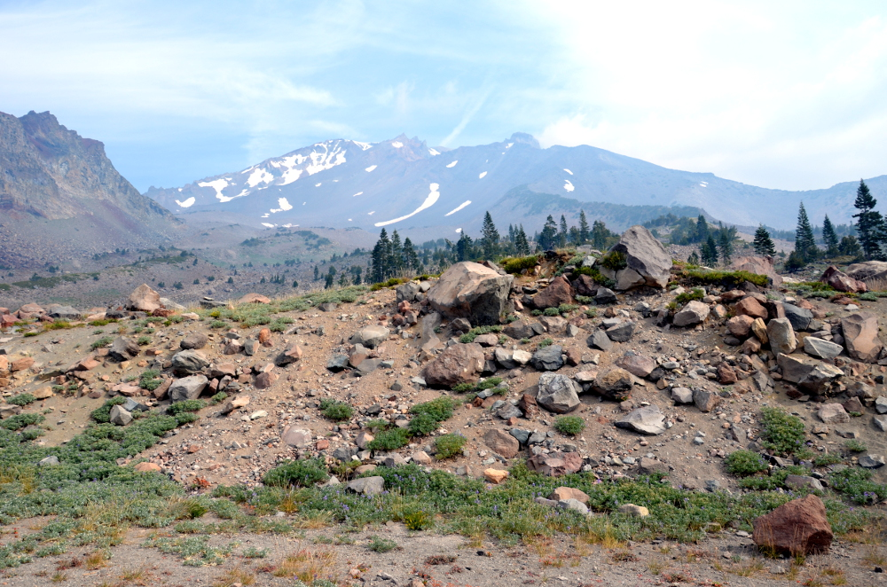 From Shasta to Lassen