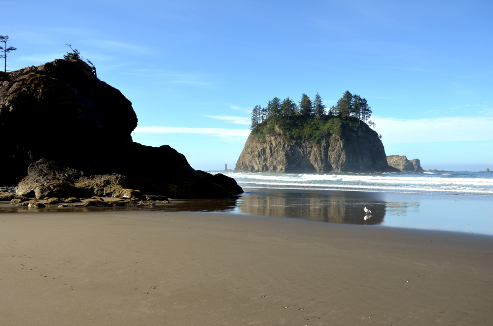 Second Beach - Olympic NP