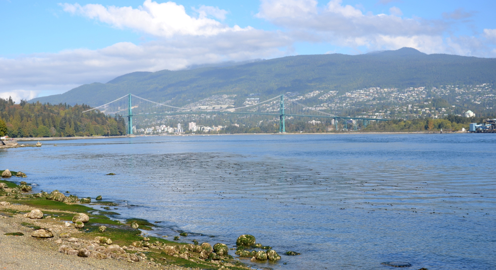 North Vancouver - Lions Gate Bridge